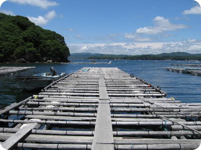 真珠養殖場の真珠筏(いかだ)