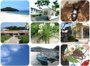 御座白浜はまゆうバンガロー 【御座白浜海水浴場のキャンプ場・海の家】
